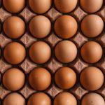 beste eierkokers uit de tests van 2020 op een rij