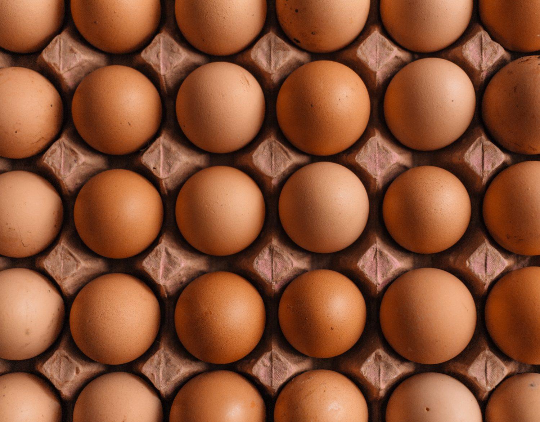 beste eierkokers uit de tests van 2021 op een rij