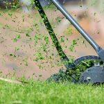 overzicht van de beste grasmaaiers uit de tests van 2020