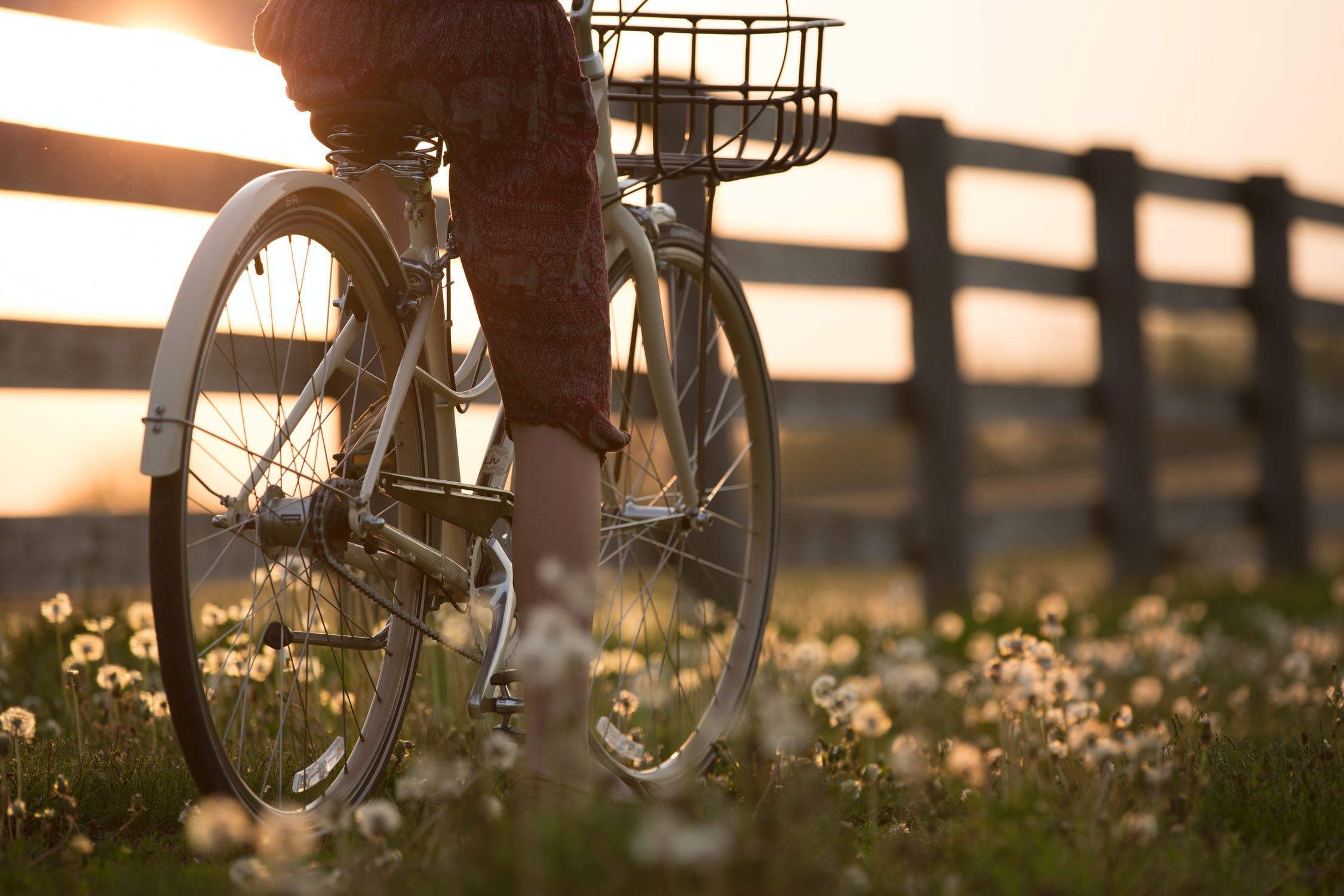 fietsendrager getest: beste fietsendragers van 2021